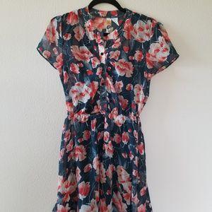 Floral Print Sheer Dress with Slip Underneath